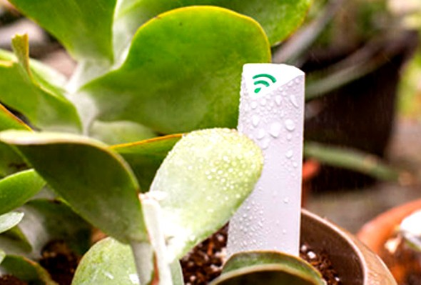 jardineria-inteligente