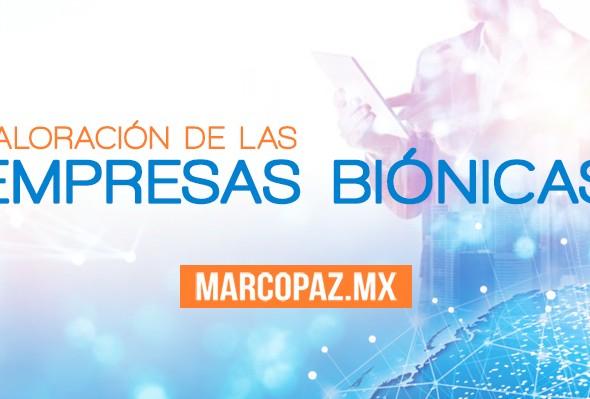 012_Miniatura_Valoración_de_las _Empresas_biónicas