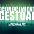 022_Miniatura_La revolución del reconocimiento gestual copy
