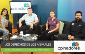 Opinadores – Los derechos de los animales