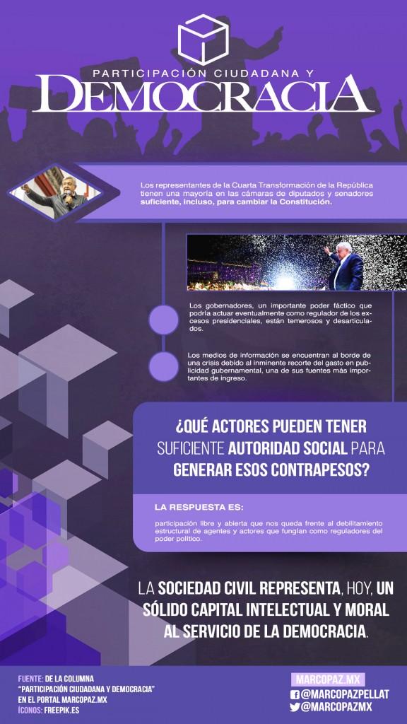 61_INFOGRAFIA_Participación ciudadana y democracia copy