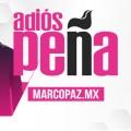 73_miniatura_ adios peña copy