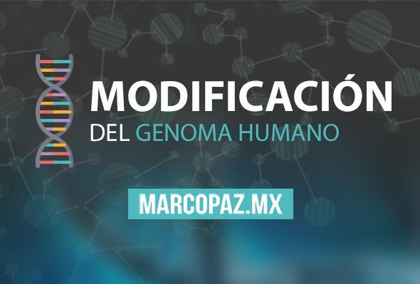 84_Miniatura_Modificación del genoma humano copy