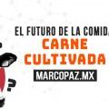 171_Miniatura_CARNE CULTIVADA