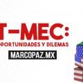 172_Miniatura_T-MEC
