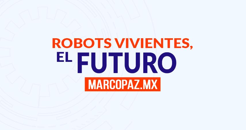 177_Miniatura_ROBOTS