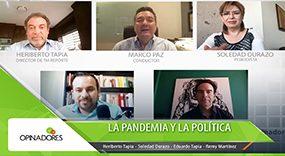La pandemia y la política