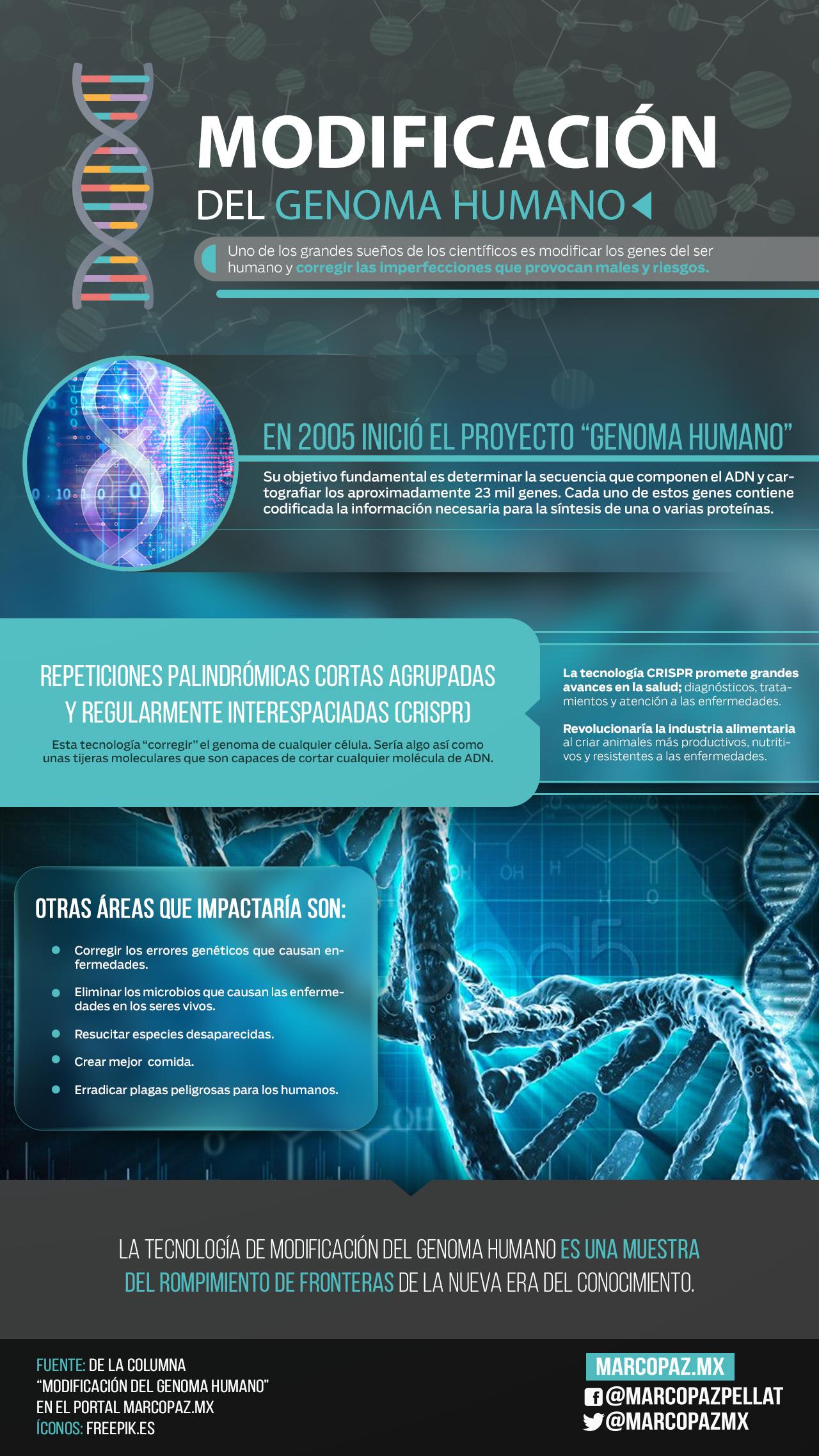 84_INFOGRAFIA_Modificación del genoma humano copy